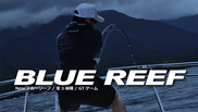 Yamaga BlueReef 711/8 StickBait